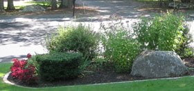 Want to put a Boulder in Your Yard?